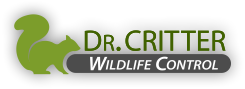 Dr. Critter Wildlife Control